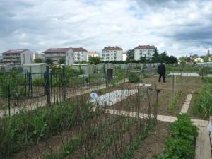 jardin partagé annemasse